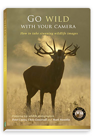 Picture of Go Wild TV DVD